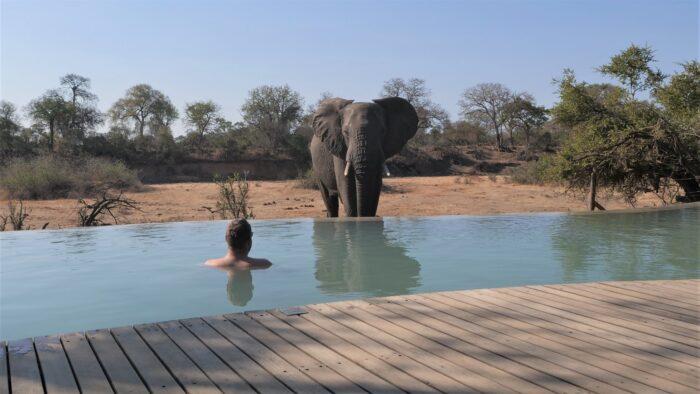 Alexander Mirschel auf Safari in Afrika